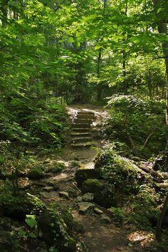 Park prirode Papuk - Jankovac