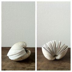 Clam shell book by Erica Ekrem from a small island in Washington state.  ハマグリの殻を使ったメモ帳。