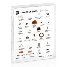 Mini Museum - Second Edition (LARGE - 26 Specimens)