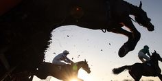 Three horses jump over a hurdle (image courtesy of Scottish Racing)