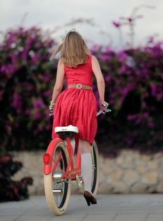 Amelie Bicycle  www.facebook.com/loveswish