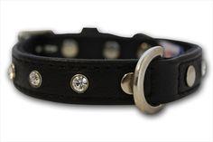 Angel Pet Supplies Athens Rhinestone Dog #Collar in Midnight Black