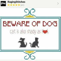 Shady cat