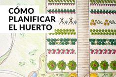 La asociación de cultivos en el huerto | Ejemplos