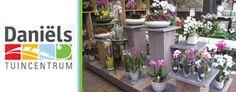 Fleur uw tuin, balkon, woonkamer, vensterbank of terras op met deze waardebon van Tuincentrum Daniels! Kijk snel op: http://wowdeal.nl/roermond/Waardebon-bij-Tuincentrum-Daniels