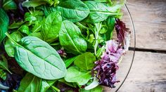 One of the healthiest ways to use delicious and seasonal fruits and vegetables is in a salad. With Labor Day right around the corner, we asked a few of our authors to let us know what's on the menu…  Meadow Linn is an accomplished chef who's been sharing her love of food since she was old enough t