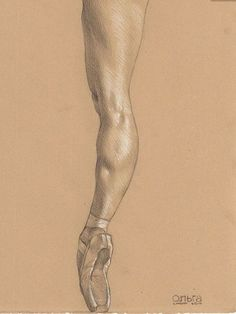 "By Daniel Maidman: ""Leg of the Ballet Dancer Olga Kuraeva ( pencil and white Prismacolor pencil on Rives BFK Tan Heavyweight Printmaking Paper Human Figure Drawing, Figure Drawing Reference, Anatomy Reference, Life Drawing, Figure Drawings, Body Sketches, Drawing Sketches, Pencil Drawings, Sketching"