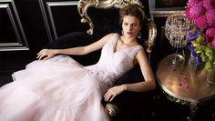 """A """"Bridal Amusement Park""""...Check it out at NBCChicago.com"""