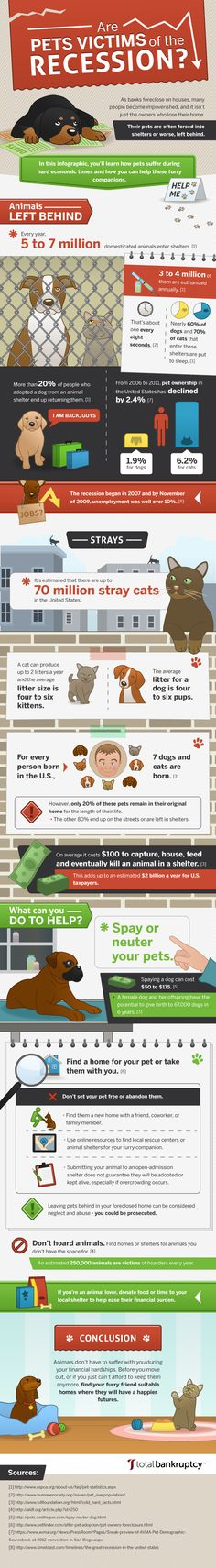 Often times, the pets of those who lose their home are forced into shelters or worse, left behind. In this infographic, you'll learn how pets suffer during hard economic times and how you can help these furry companions.