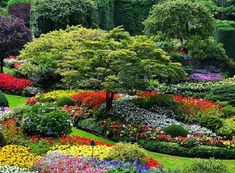 Take a walk through some of the most beautiful gardens from around the world.