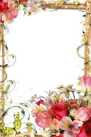 bouquet pink flowers frame