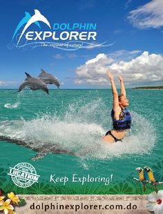 INCREDIBLE! Dolphin Explorer in Punta Cana, Dominican Republic. This is done in the ocean instead of in a tank. They are such amazing, intelligent creatures!