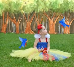 Snow White Costume Tutorial - using basic craft materials and the step by step instructions, create this incredible tutu dress! Tutu Dress Tutorial, Dress Tutorials, Costume Tutorial, Snow White Tutu, Snow White Costume, Halloween 2013, Halloween Photos, Tulle Dress, Diy Dress