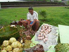 Samoan man preparing the umu.