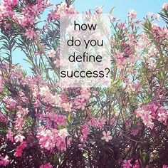 The Dizzy Mom: success defined