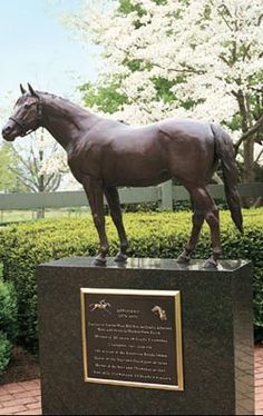 Affirmed - Race Horse. In 1978 he became the 11th horse to win horseracing's Triple Crown (Kentucky Derby, Preakness, and Belmont Stakes races). A three-year old ridden by jockey Steve Cauthen that year, whose three races and other encounters that year in essence a rivalry with another top horse of the day, Alydar. Affirm captured the Derby by a length and a half, the Preakness by a neck and the Belmont by a head.