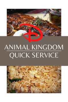 Animal Kingdom Quick Service Restaurants - Full Guide - Planning The Magic
