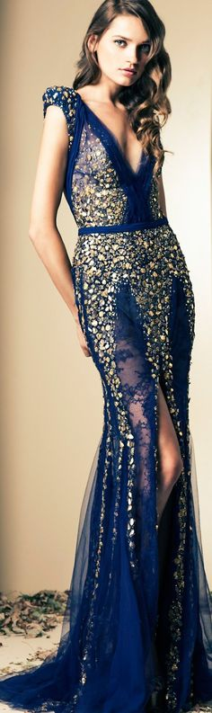 Ziad Nakad 2014 Fall Couture Collection jaglady