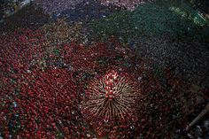Members of the Castellers Joves Xiquets de Valls try to complete their human tower in Tarragona, Spain, Oct. 5, 2014