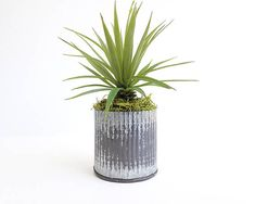 Gift for her, birthday gift, faux succulent, terrarium, succulent gift, succulent planter, desk accessories, galvanized, yucca plant, cactus