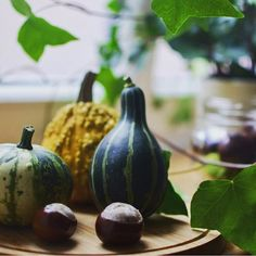 Autumn home decoration. Ivy, chestnuts and decor pumpkins.