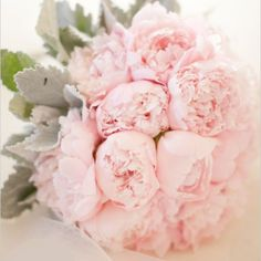 Who knew that by only using two flowers you could have such a dreamy wedding bouquet? Petal Productions used large leaf dusty miller and light pink peonies to put together this exquisite bouquet. It truly is the ultimate girly wedding bouquet. Peony Bouquet Wedding, Peonies Bouquet, Pink Peonies, Wedding Flowers, Bridal Bouquets, Pink Flowers, Pink Roses, Fresh Flowers, Garden Rose Bouquet