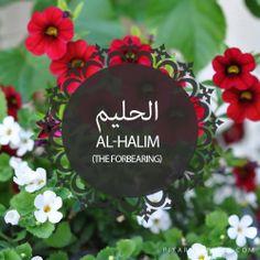 Al-Halim,The Forbearing,Islam,Muslim,99 Names