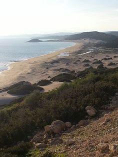 Golden Sand beach-karpaz-north Cyprus  #northcyprus #apartments #villas #travel #honeymoon #beauty #spas  #weddings #weddingplanner #weddingplanning http://www.cyprusluxurydestinations.com