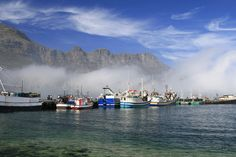 Hout Bay - South Africa (stunning boat ride out to Robben Island) Africa Destinations, Rest Of The World, Cape Town, Kayaking, South Africa, Tourism, Scenery, Coast, City