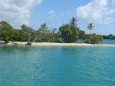 No Man's Land, Tobago.  Purest bliss.