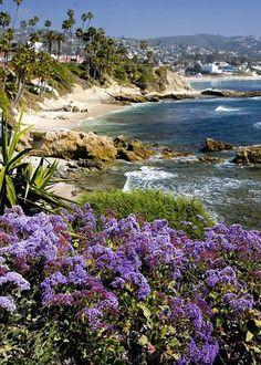 Laguna Beach, California – Sitting on the beach watching the Dolphins swim free in the ocean