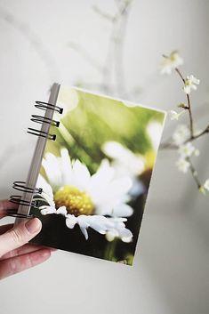 ArtStore / Zápisník JAR Scrapbooks, Jar, Pictures, Fotografia, Paper, Scrapbook, Scrapbooking, Jars, Drinkware
