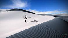 Пустыня (50 фото) http://classpic.ru/blog/pustynya-50-foto.html   Пустыни производят неизгладимые впечатления. Огромные дюны песка, обдуваемые горячим ветром, яркое солнце, жара и тихое безмолвие – всё это удивительная...
