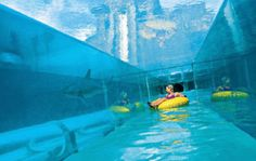 Atlantis hotel Bahamas this under water slide looks scary what if it breaks then you'll be swimming with the sharks!!!