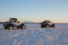 Amarok in Kamchatka