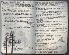 pacific crest trail 500 miles 5 moleskin pocket journals