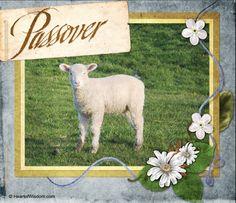 Exodus Lesson: Passover Lamb: 4-Step #Bible Lesson, homeschool, Bible study, #free printable #lapbook, Bible #craft #scrapbook