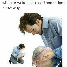 When You Bought A Cool Fish You Saw On The Discovery Channel And Now You're Unsure If It Was The Right Decision - Funny Memes. The Funniest Memes worldwide for Birthdays, School, Cats, and Dank Memes - Meme Funny Shit, Stupid Funny Memes, Funny Relatable Memes, Haha Funny, Hilarious, Funny Stuff, Dank Memes Funny, Funny Humor, Funny Quotes