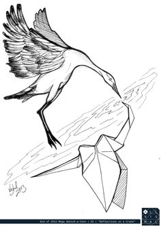 Crane // reflection //