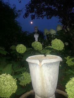 Garden fountain under the moon