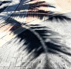 Nike Logo, Shadows, Palm, Darkness, Ombre, Hand Prints