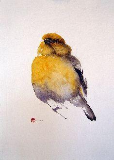Pine Grosbeak Female - Karl Mårtens - watercolor