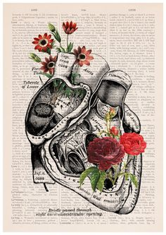 Flowery Heart Poster A3 poster anatomical art Roses art by PRRINT