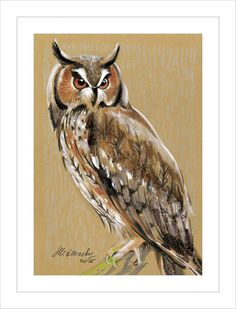 Owl - Original mixed media Painting 6x8 inches Bird wild nature Winter Snow by MSbluesky on Etsy