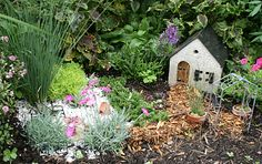 This fairy garden was tucked into a perennial bed at Mischler's Florist and Greenhouses in Williamsville, NY.