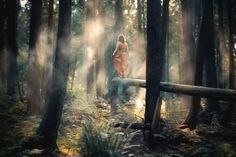 Fotografía de increíbles paisajes por Elizabeth Gadd - Antidepresivo