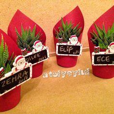Sukularımız da yılbaşına hazırlanıyoor🎅🏻🎄🎉 Succulent Party Favors, Succulent Planter Diy, Succulent Gifts, Christmas Plants, Christmas Design, Diy Holiday Gifts, Holiday Crafts, Flower Shop Design, Work Gifts