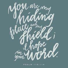 Psalm 119:114 Lettered by Sincerely Me Sincerely_me_caroline www.sincerelymecaroline.com