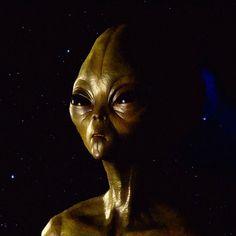 'Alien' by SerpentFilms Chiffon Shirt, Chiffon Tops, Esoteric Art, Long Hoodie, Ufo, Framed Art Prints, Fantasy, Fantasy Books, Fantasia