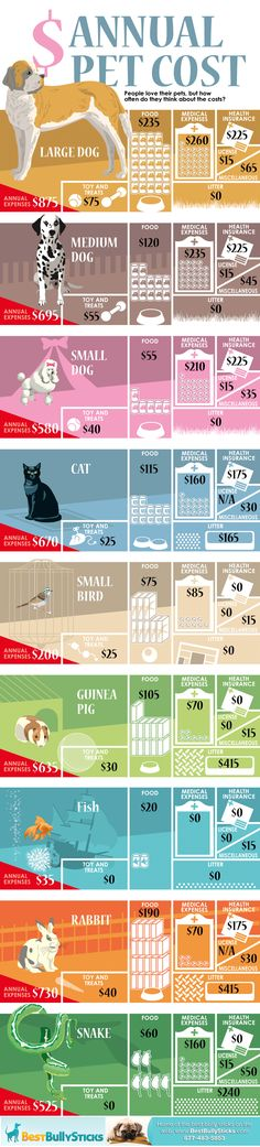 Nice infographic on the annual cost of owning a pet, breaks it down into all types of pets from large dogs to snakes.